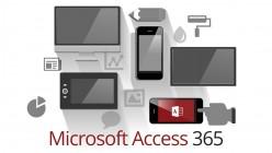 access-365-2013