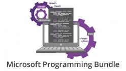 Microsoft Programming